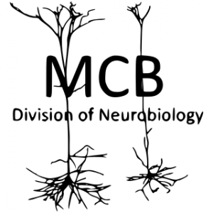 MCB Neurodivision