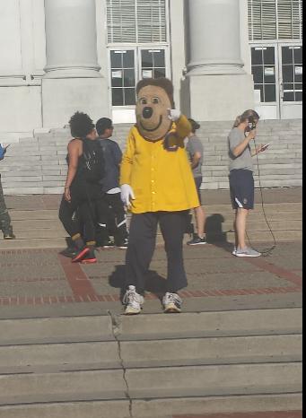 oski, mascot