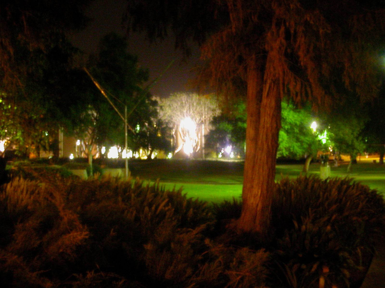 ucla campus at night - photo #45