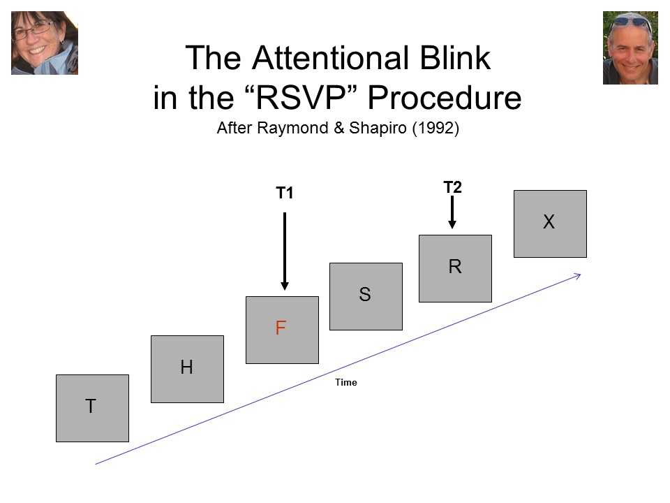 attentional blink Paying attention on all input leaves a gap called attention blinkits awareness help people enhance their capability to pay attention.