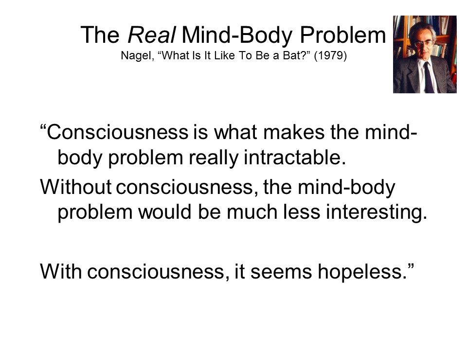 essay on mind/body problem Mind-body theories mind-body theories are putative solutions to the mind-body problem the mind-body problem is that.