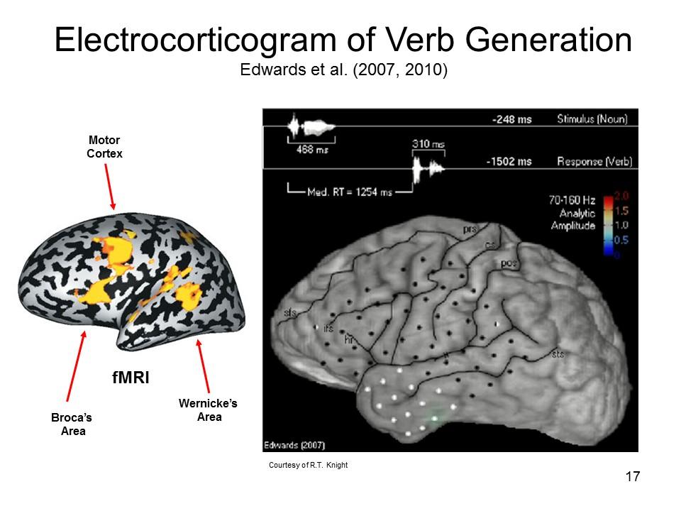 Biological Bases of Mind and Behavior