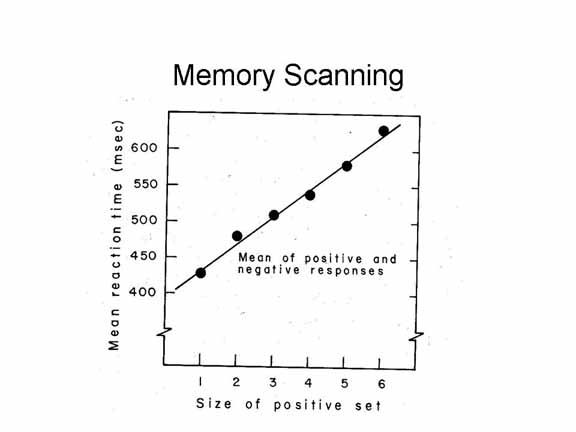 primary memory History edit main article: history of early working memory research the term was first used in the 1960s in the context of theories that likened the mind to a computer before then, what we now call working memory was referred to as short-term memory, sometimes also as primary memory, immediate memory, operant memory, or.