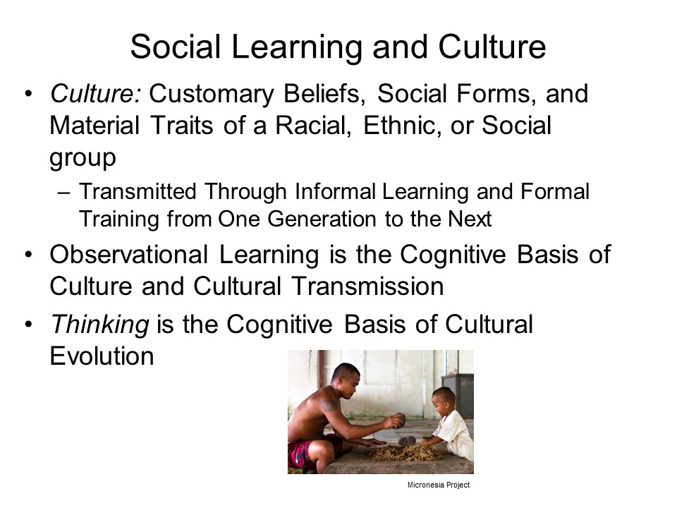 journal on rotter and mischel cognitive social learning theory International journal of sociology and anthropology research  the concept of social cognitive theory  social learning theory of julian rotter .