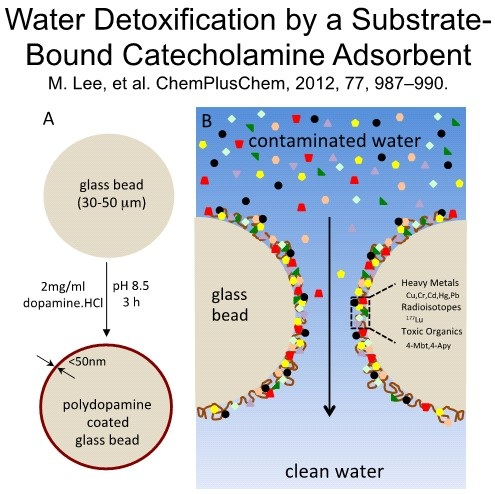 11 water detoxification by a substrate-bound catecholamine anchor