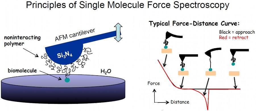 Principles of single moleculs force spectroscopy