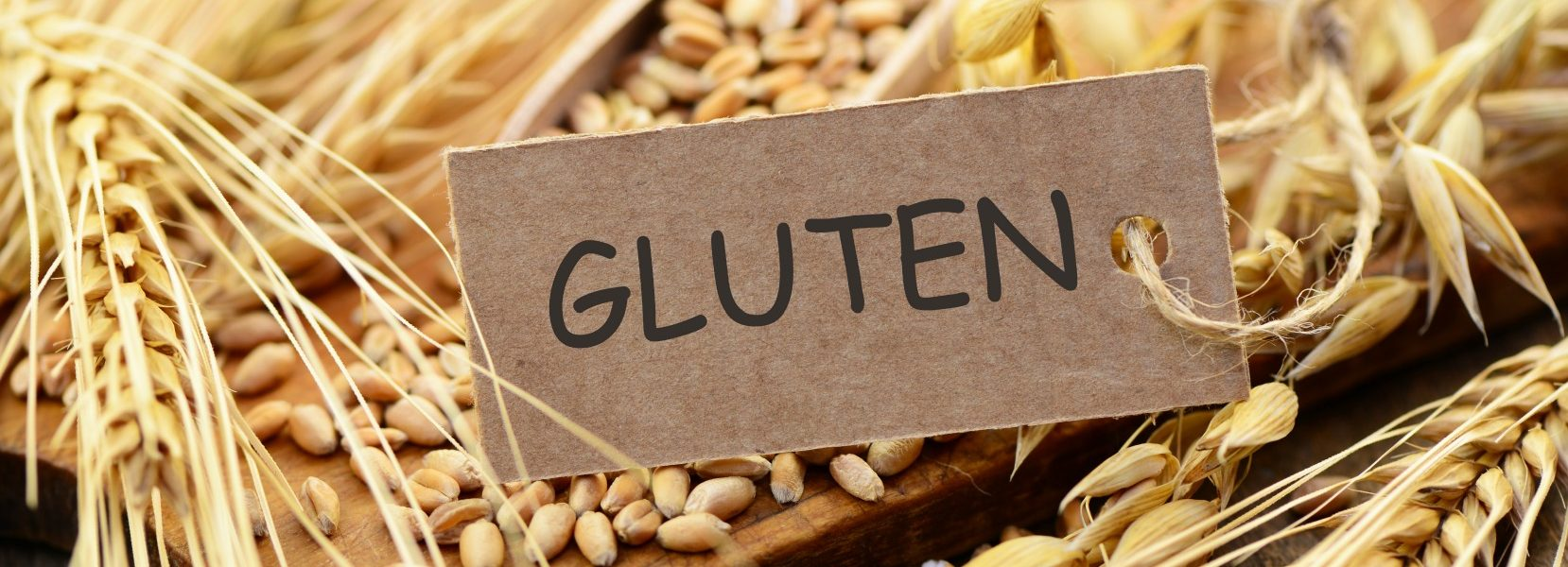 Gluten free dating founder