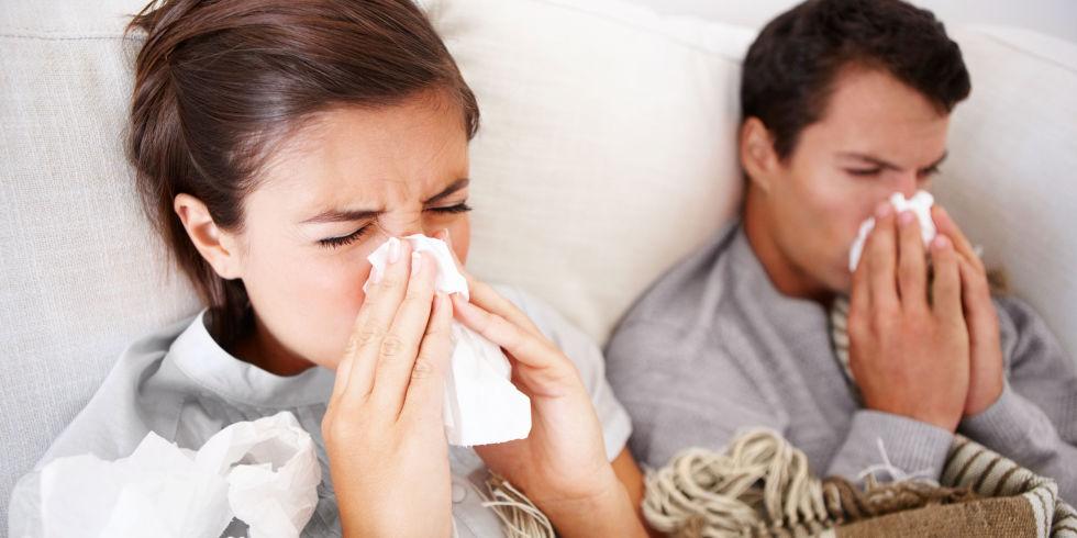 Common Sense About the Common Cold